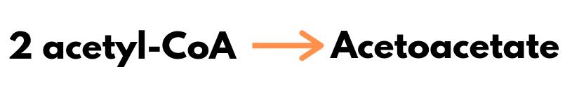 2 acetyl-CoA molecules to acetoacetate